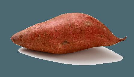 batata-doce-ou-batata