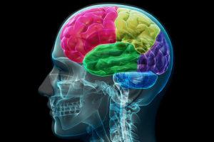 As 6 Melhores Dicas para Manter a Saúde Mental