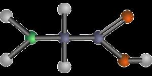 aminoácido não produzido no corpo